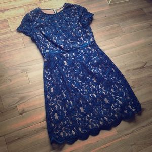 Ardriana Papell cobalt blue lace dress